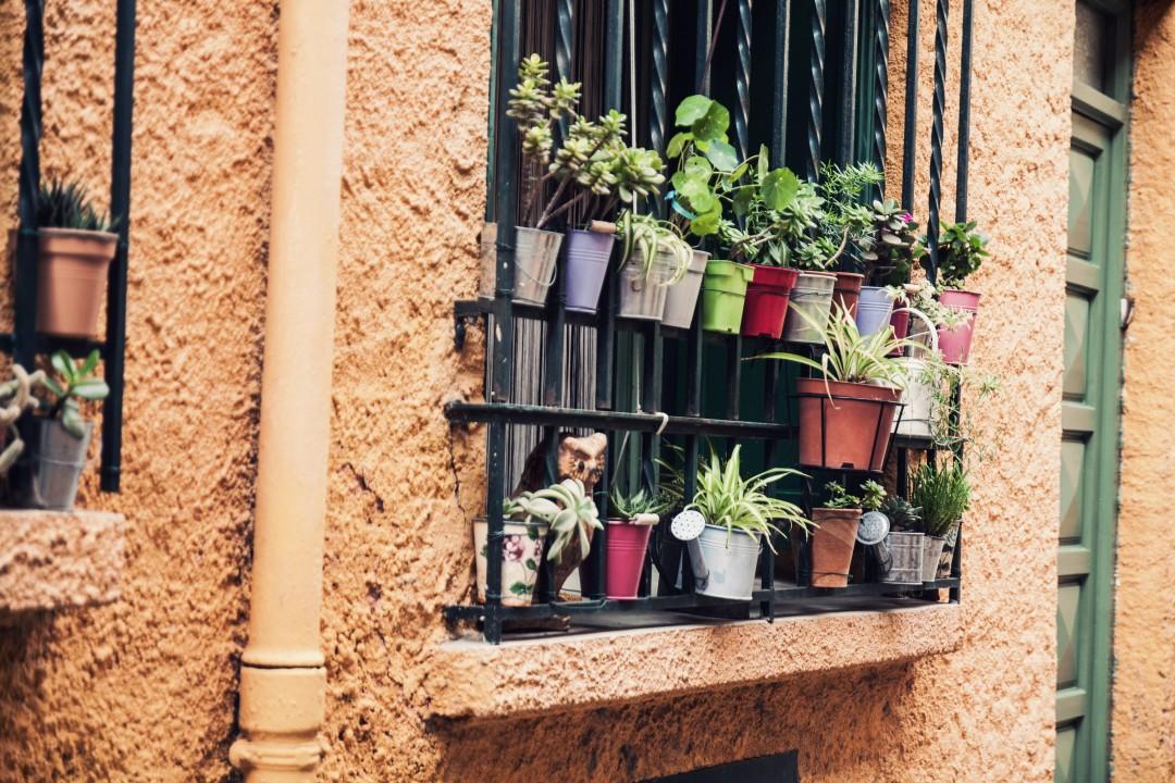 Visiter Collioure en Novembre