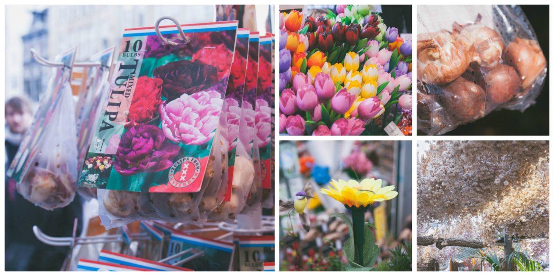 Visiter le marché aux fleurs à Amsterdam