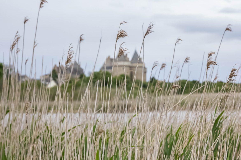 domaine-chateau-suscinio-sarzeau-bretagne