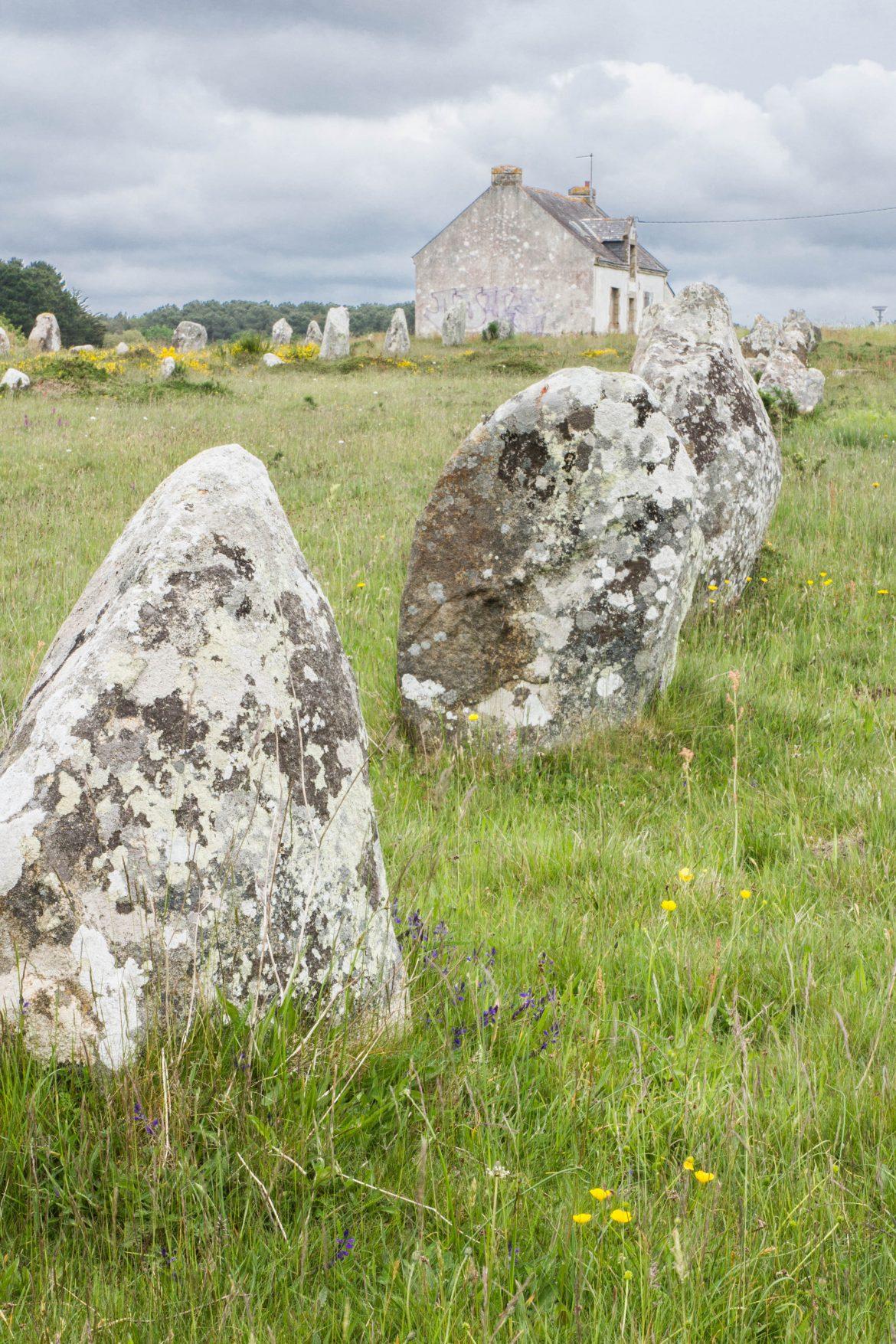 Visiter les menhir de Carnac au mois de mai