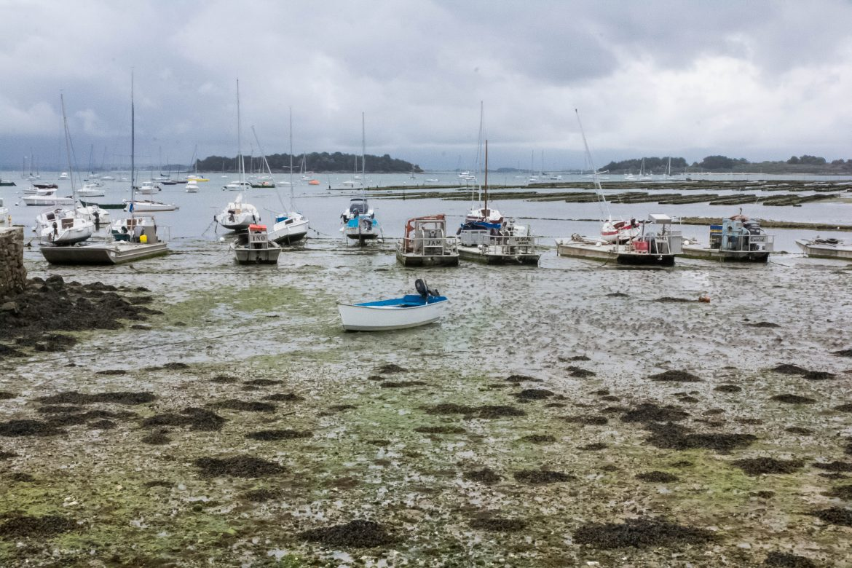 Arzon- presqu'île de Rhuys