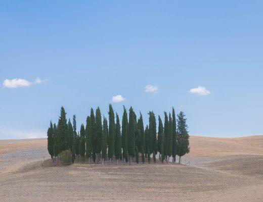 Montalcino toscane-30