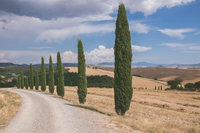 payasage Tscane du sud