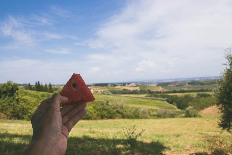 san gimignano Toscane-8