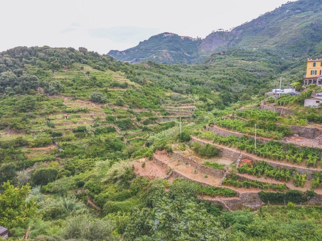 Corniglia village cinq terre