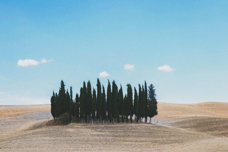 Roadtrip en Italie : la Toscane