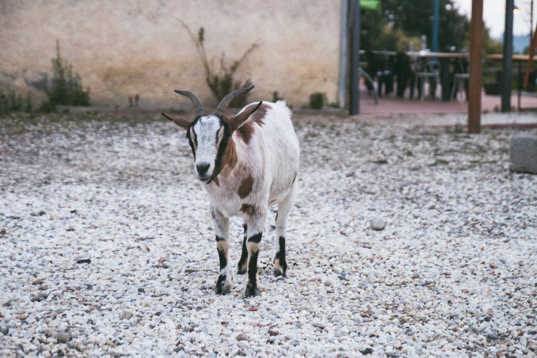 agritourisme Toscane
