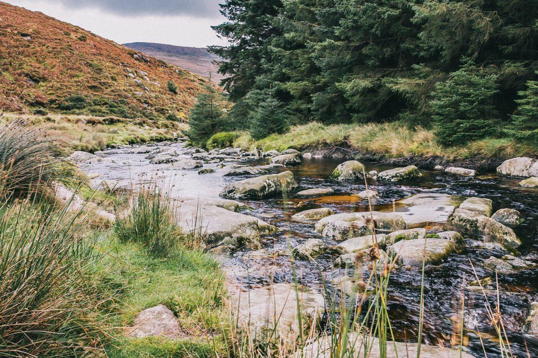 parc national des monts wicklows, randonnées et road trip en Irlande