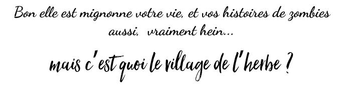 Village-l-herbe-cap-ferret