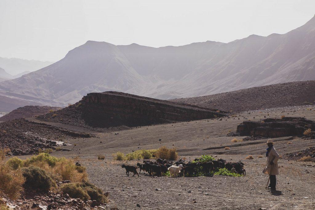 roadtrip-maroc-vallee-drâa-desert
