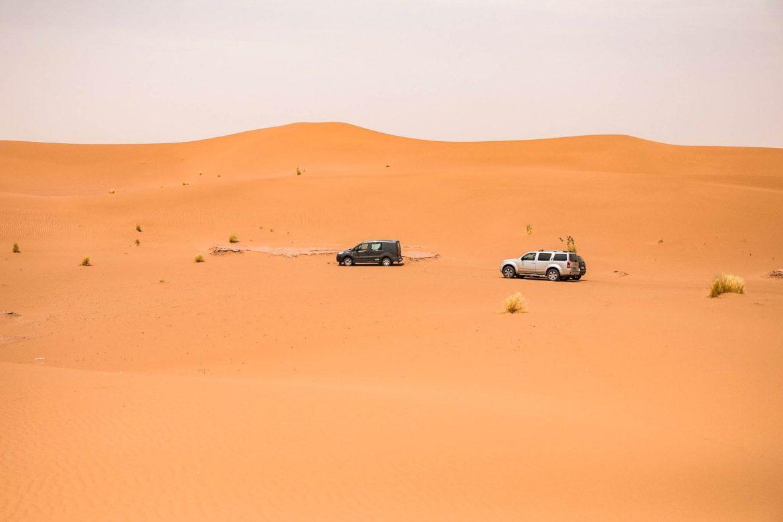 Road trip désert de M'Hamid : le plus beau désert du Maroc