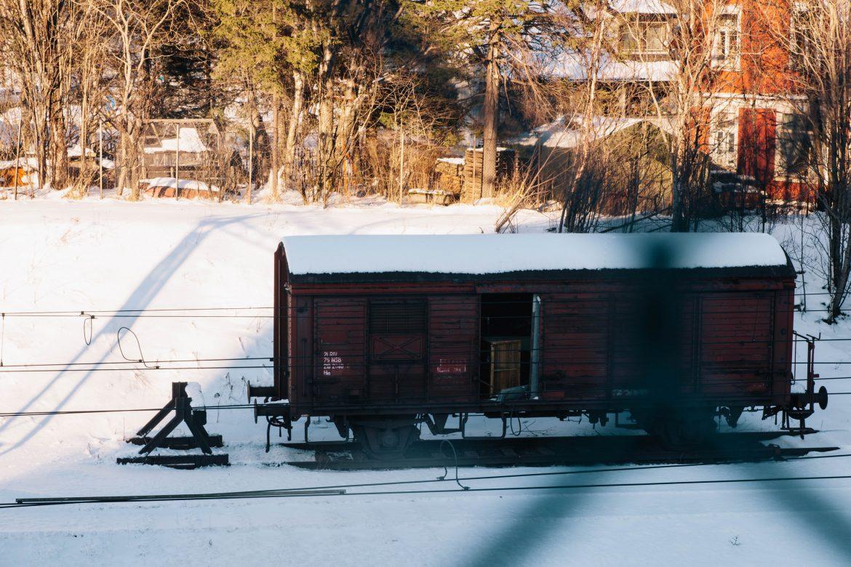Que faire-voir à narvik en hiver ?