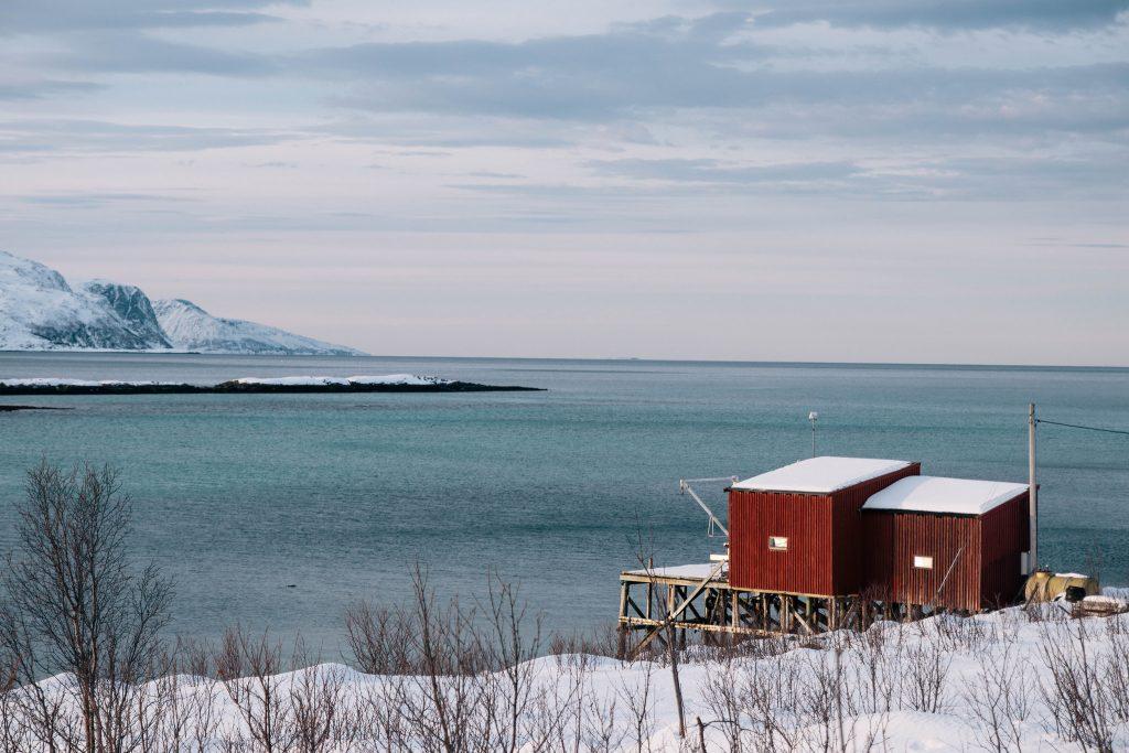 Kvaløya norvege du nord tromso
