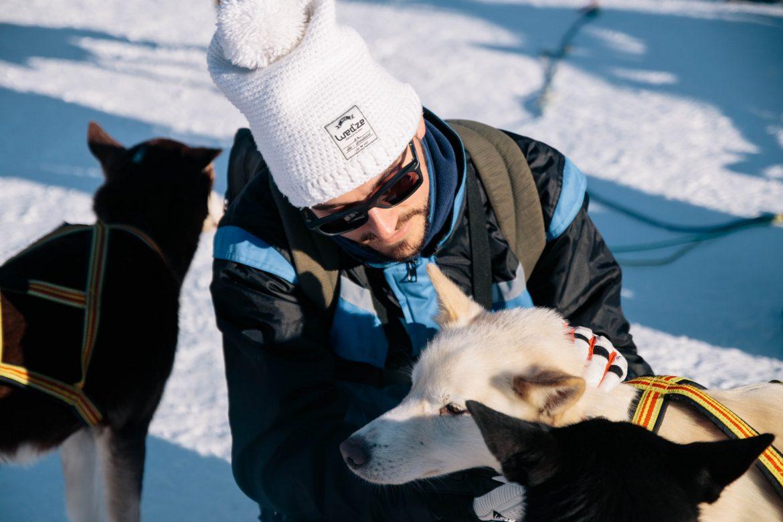 Itinéraire en Norvège du nord : chien de traîneau dans les Alpes de Lyngen