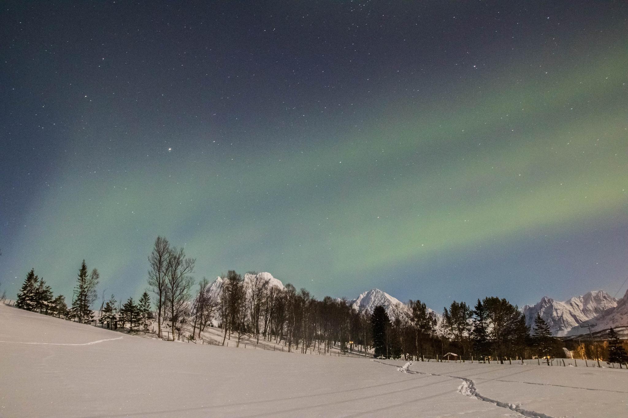 Itinéraire en Norvège du nord : aurores boréales dans les Alpes de Lyngen