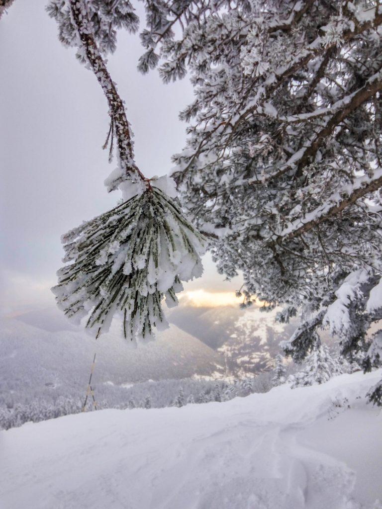 Le Mourtis, activités de plein air et nature sauvage, Pyrénées de haute Garonne