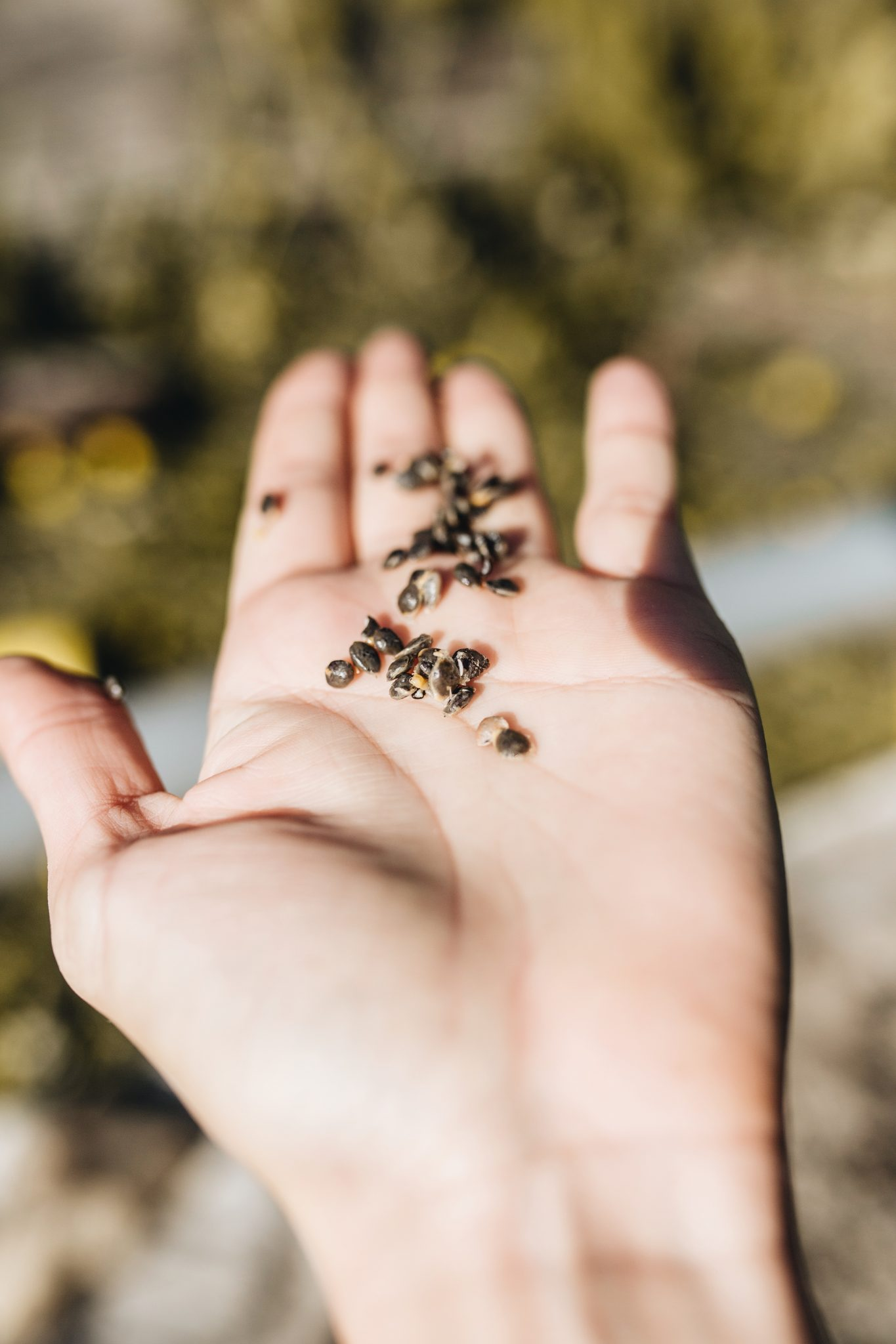 écologie : les petits gestes sont-ils efficaces ?